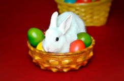 Cute easter bunny in the bowl with eggs Royalty Free Stock Photography
