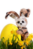 Cute Easter Bunny with easter egg Stock Images
