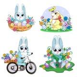 Cute Easter Bunny Stock Photos