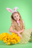 Cute easter bunny stock photography