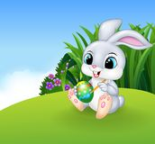 Cute Easter Bunny painting an egg on the Meadow background Stock Image