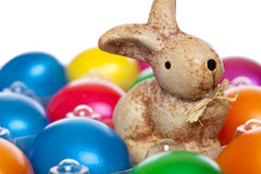Cute Easter bunny sitting between Easter eggs Stock Image