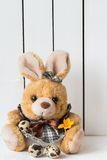 Cute Easter Bunny Stuffed Toy in a Dress with Quail Eggs and an Orange Crocus Flower Stock Photo