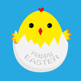 Cute easter chicken and egg shell.  Card. Stock Photo