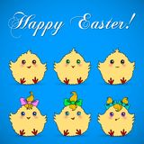 Cute easter chickens Royalty Free Stock Photo