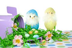 Cute Easter Chicks Royalty Free Stock Photo
