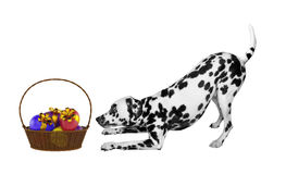 Cute Easter dog with eggs in basket isolated on white Royalty Free Stock Photography