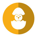 Cute easter egg chick shadow Royalty Free Stock Image
