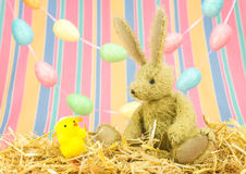 Cute Easter friends.Toy bunny rabbit and chick. Royalty Free Stock Photography