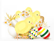 Cute Easter greeting card with chikens and eggs stock illustration