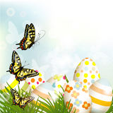 Easter  outdoor background with clear space, eggs and green gras Royalty Free Stock Photo