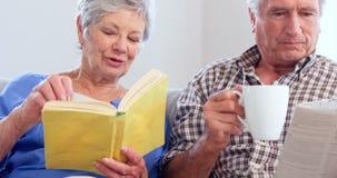 Cute elderly couple reading stock footage
