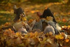 Cute elderly couple. Resting in autumn park stock image