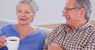 Cute elderly couple talking. On sofa stock footage