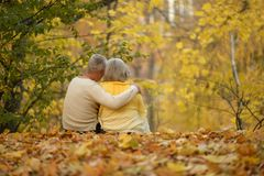 Cute elderly couple. Walking in autumn park stock photo