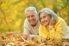 Cute elderly couple stock images