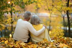 Cute elderly couple Royalty Free Stock Photos