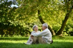 Cute elderly couple Stock Image