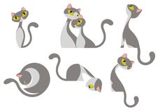 Cute Elegant Gray White Cat Design Set. All elements are grouped together logically and easy to edit vector illustration