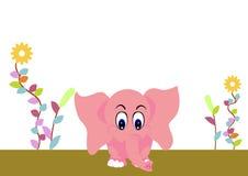 Cute elephant baby Royalty Free Stock Photography