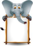 Cute elephant with blank sign Stock Photos
