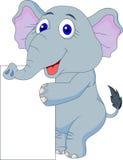 Cute elephant cartoon with blank sign Stock Photos