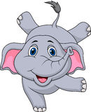 Cute elephant cartoon circus Stock Images