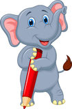 Cute elephant cartoon holding red pencil Stock Images