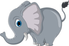 Cute elephant cartoon. Illustration of cute elephant cartoon Vector Illustration