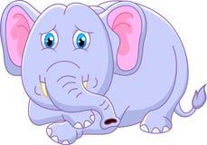 Cute elephant cartoon Royalty Free Stock Image