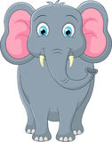 Cute elephant cartoon. Illustration of Cute elephant cartoon Royalty Free Stock Photos