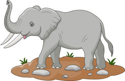 Cute elephant cartoon. Illustration of Cute elephant cartoon stock illustration