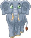 Cute elephant cartoon Royalty Free Stock Photo