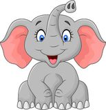 Cute elephant cartoon sitting Stock Photos