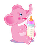 Cute Elephant. Elephant With Milk Bottle. Welcome Baby Girl. Vector Illustration. Cute Elephant Baby. Royalty Free Stock Image