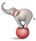 Cute  Elephant funny cartoon character Stock Images