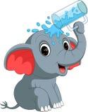 Cute elephant holding glass Stock Photo