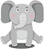 Cute elephant Royalty Free Stock Photos