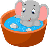 Cute elephant Stock Photography