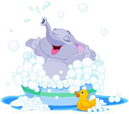 Cute elephant. Illustration of cute elephant takes bath into basin Royalty Free Stock Image