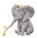 Cute elephant with little duck. Cute elephant with floral wreath and little duck royalty free illustration