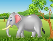 Cute elephant mascot in the jungle Stock Photo
