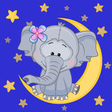 Cute Elephant on the moon Royalty Free Stock Photography