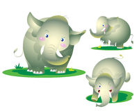Cute elephant naughty. Actions emotion Stock Photos