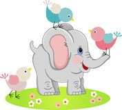 Cute Elephant with a three birds Stock Images