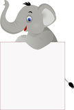 Cute elephant on the white sign Stock Image