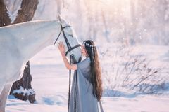 Cute elf princess in long gray cloak and vintage dress, girl with long black wavy curly hair stands next to white royalty free stock photos