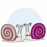 Cute escargot and cute female escargot. And white background Stock Photography