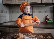 Cute European boy in a suit of the cook makes ginger cookies stock photos