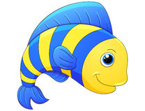 Cute exotic fish Stock Photography